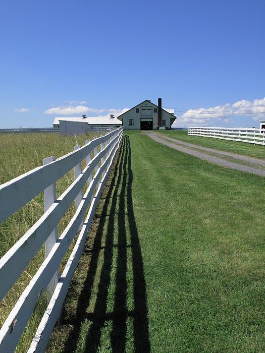 Farmhouse And Fence Print by Frank Romeo