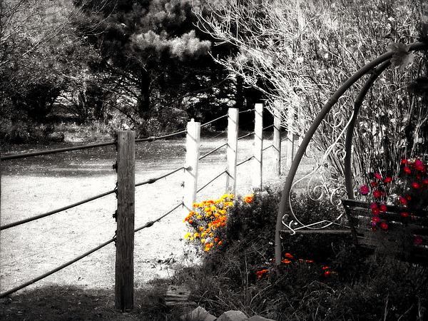 Fence Near The Garden Print by Julie Hamilton