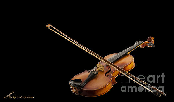 Fiddle And Bow Print by Torbjorn Swenelius