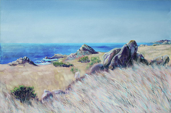 Fields With Rocks And Sea Print by Asha Carolyn Young