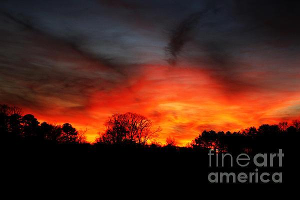 Fiery Sky By Jinx Farmer