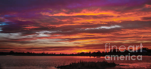 Fiery Sunset Print by Robert Bales