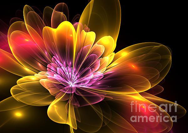 Fire Flower Print by Svetlana Nikolova