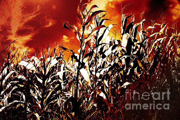 Fire In The Corn Field Print by Gaspar Avila