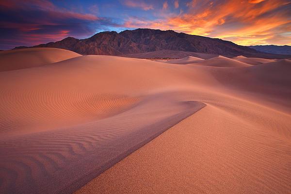 Fire On Mesquite Dunes Print by Darren  White