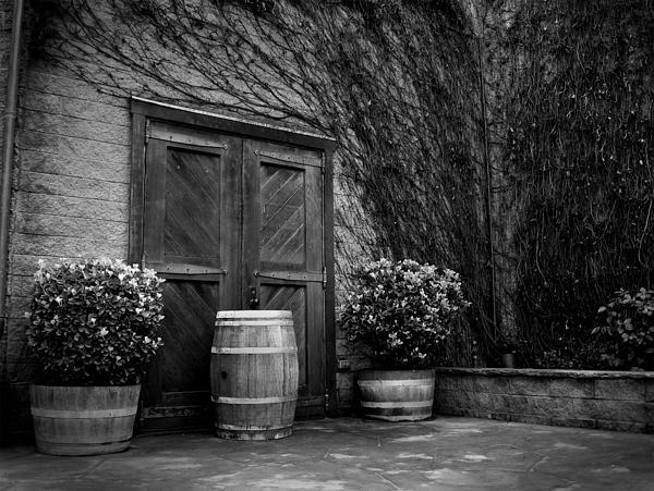 Firestone Vineyard Print by Jeff Garris