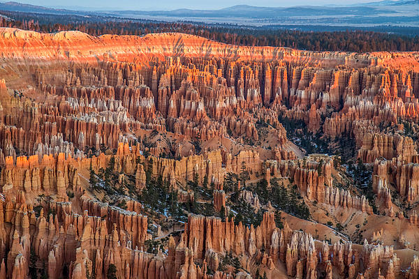 First Light In Bryce Print by Pierre Leclerc Photography