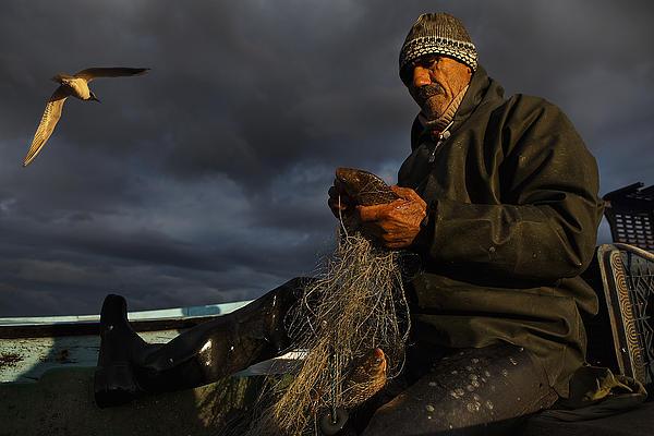 Fisherman And Seagull  Print by Yavuz Sariyildiz