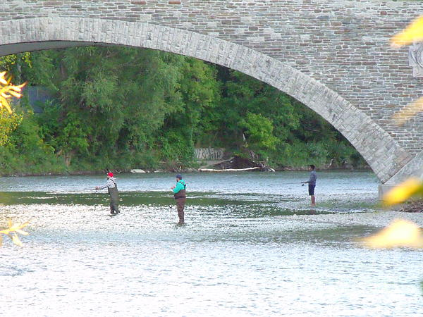 Fishing On The Humber River by Leslie Jennings