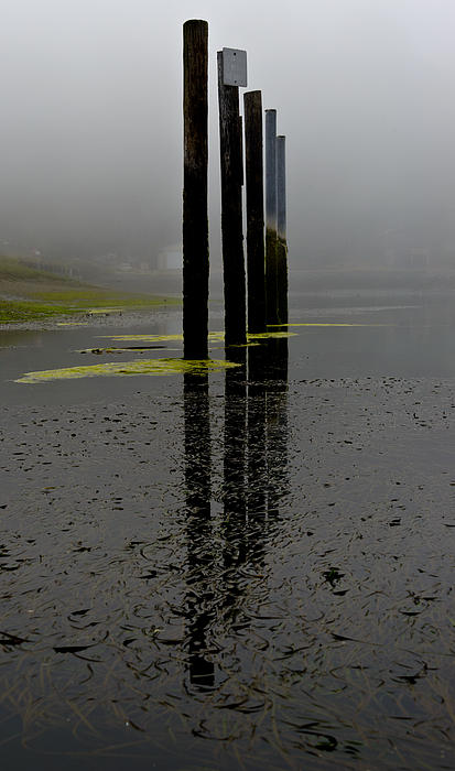 Bob VonDrachek - Five Pilings in the Fog