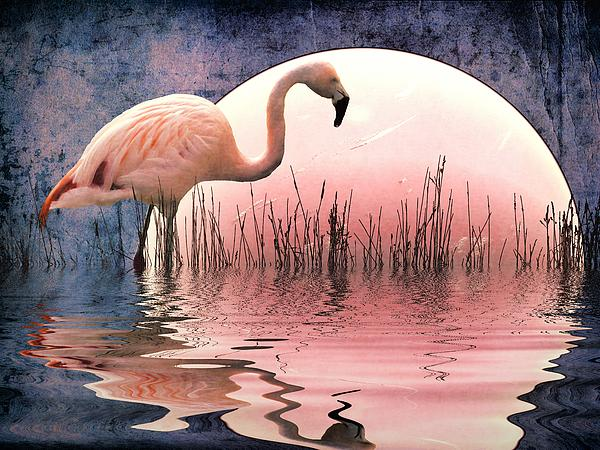 Flamingo Moon Print by Sharon Lisa Clarke