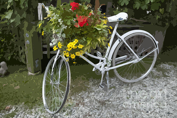 Flower Bike Print by Graham Foulkes