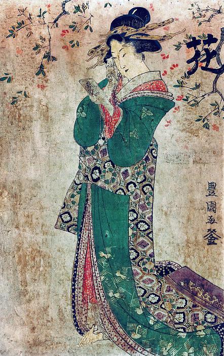 Flower Of Japan C. 1804 Print by Daniel Hagerman