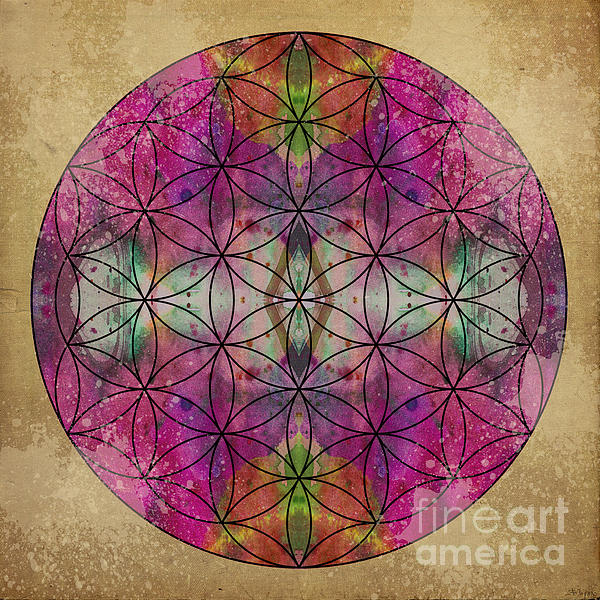 Flower Of Life Print by Filippo B