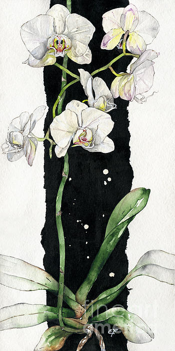 Flower Orchid 05 Elena Yakubovich Print by Elena Yakubovich