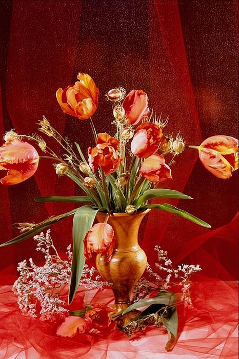 Yizhak Doron Vaknin - Flower Pot 2