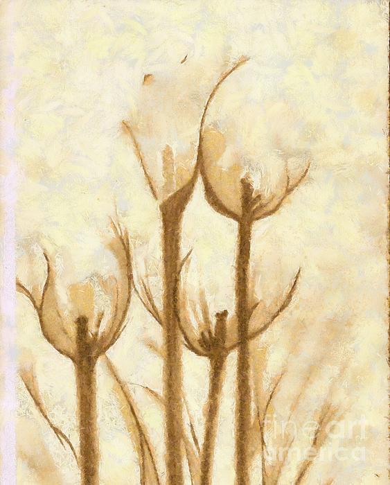 Flower Sketch Print by Yanni Theodorou