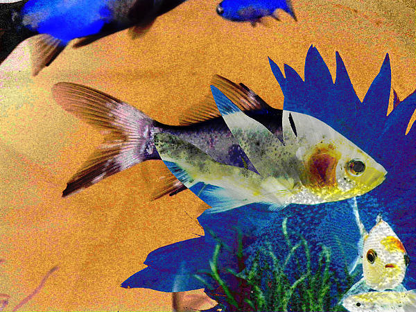 Flowers And Fins Print by Lenore Senior