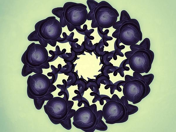 Flowers Of Algebra Print by Michael Jordan