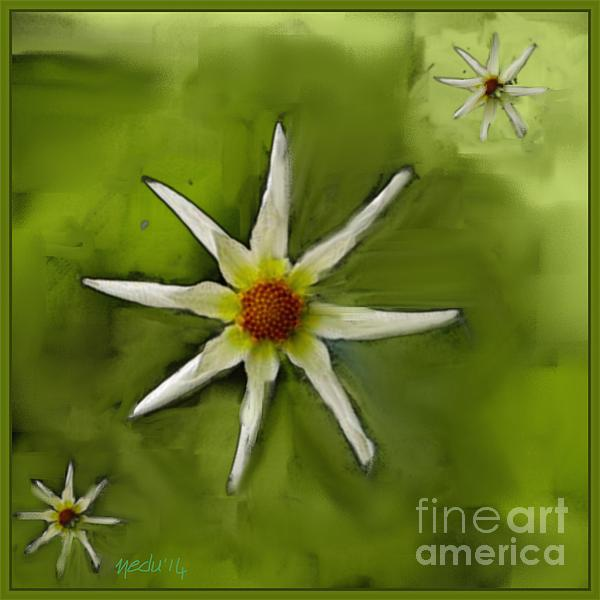 Flowers White Print by Nedunseralathan R