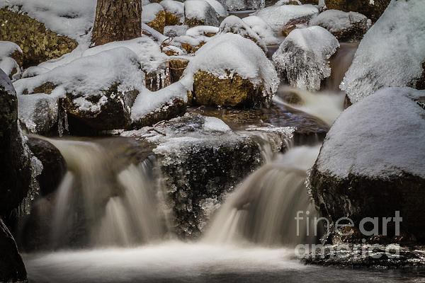 Fluid Ice Print by Mitch Shindelbower