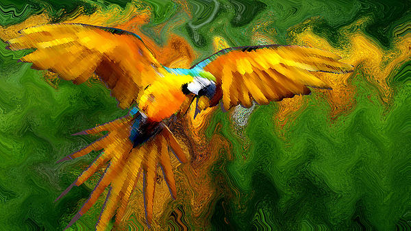 Flying 2 Print by Bruce Iorio