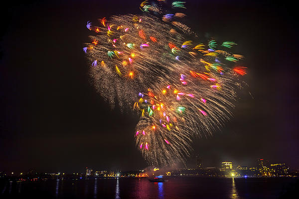 Flying Feathers Of Boston Fireworks Print by Sylvia J Zarco