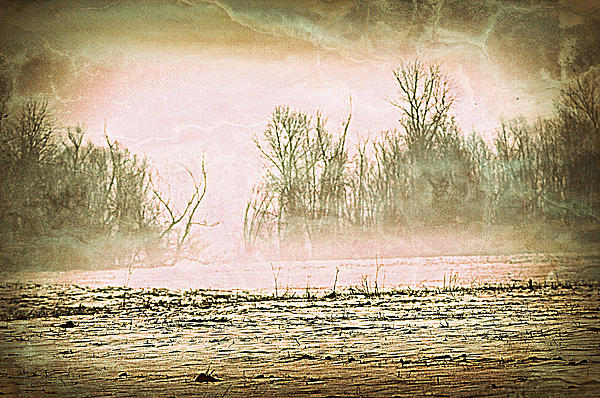 Fog Abstract 1 Print by Marty Koch