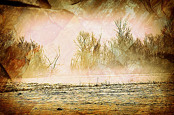 Fog Abstract 5 Print by Marty Koch