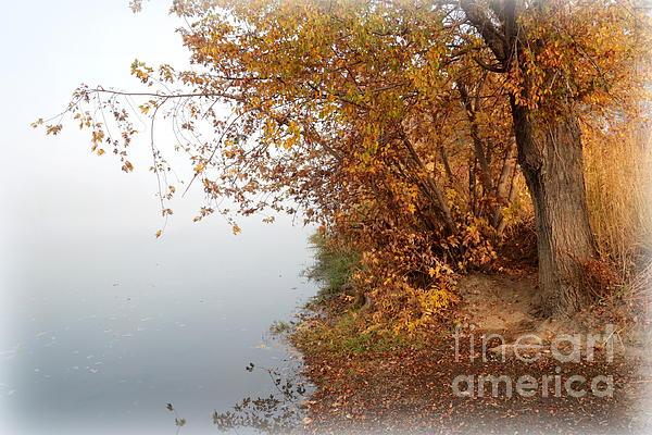 Foggy Autumn Riverbank Print by Carol Groenen