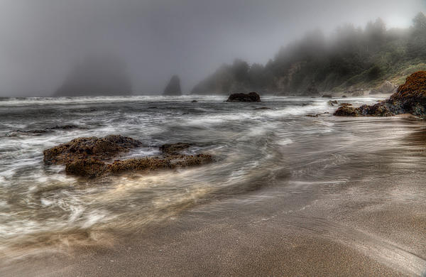 Mark Alder - Foggy Day at Trinidad