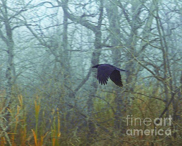 Foggy Flight Print by Judy Wood