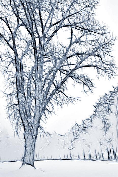 Foggy Morning Landscape - Fractalius 2 Print by Steve Ohlsen