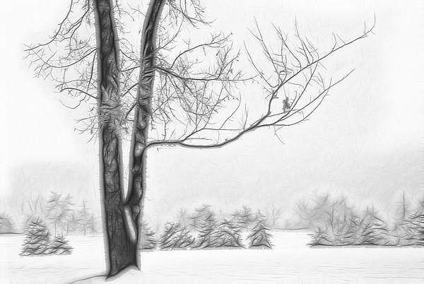 Foggy Morning Landscape - Fractalius 5 Print by Steve Ohlsen