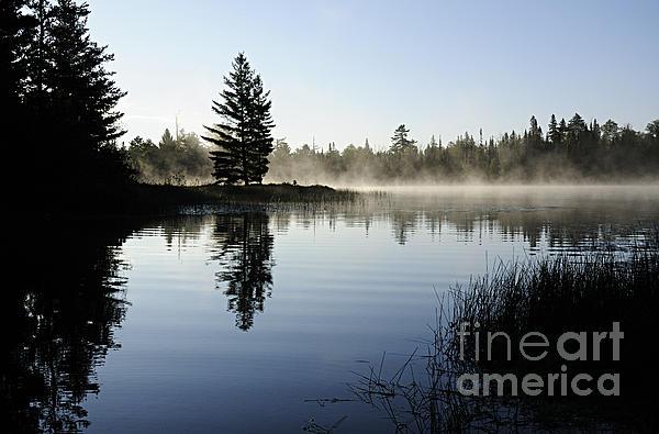 Foggy Morning Print by Larry Ricker