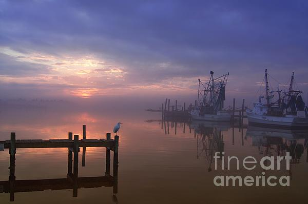 Foggy Sunset Over Swansboro Print by Benanne Stiens