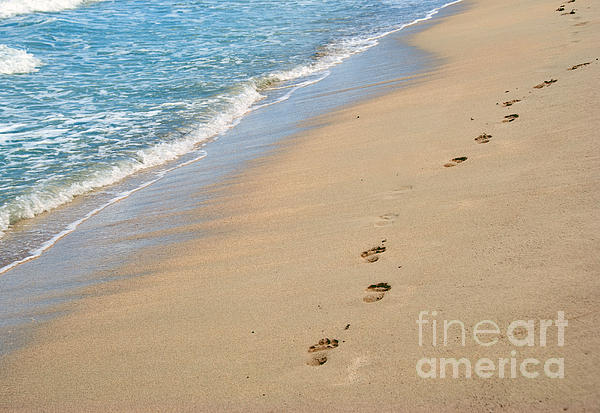 Footprints In The Sand Print by Juli Scalzi