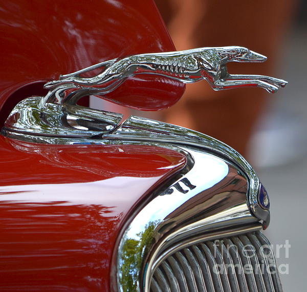 Dean Ferreira - Ford Hood Ornament