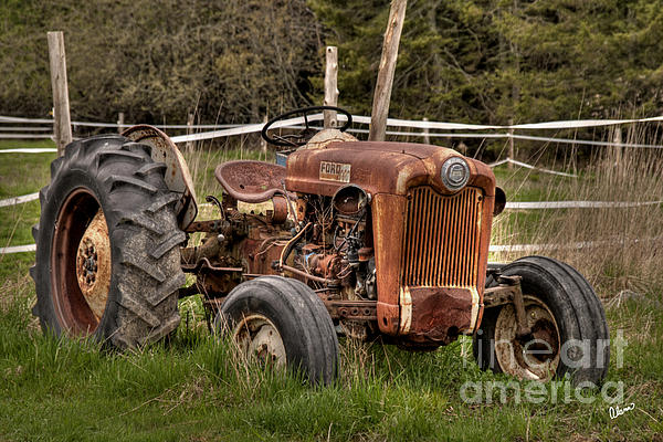 Ford Tractor Print by Alana Ranney