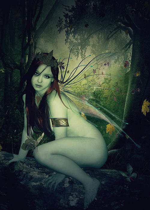 Forest Fairy Print by Kristie  Bonnewell