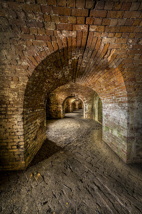 Fort Macomb Arches Vertical Print by David Morefield
