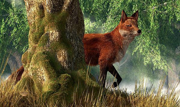 Fox In A Forest Print by Daniel Eskridge