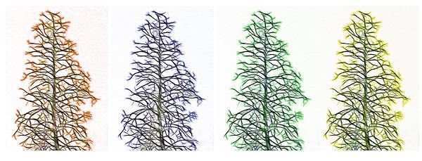 Fractal Seasons - Tetraptych Print by Steve Ohlsen