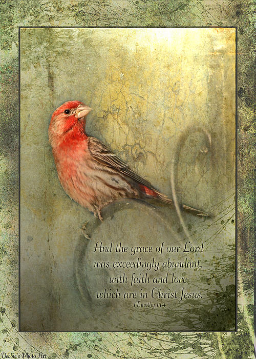 Debbie Portwood - Framed Finch with verse
