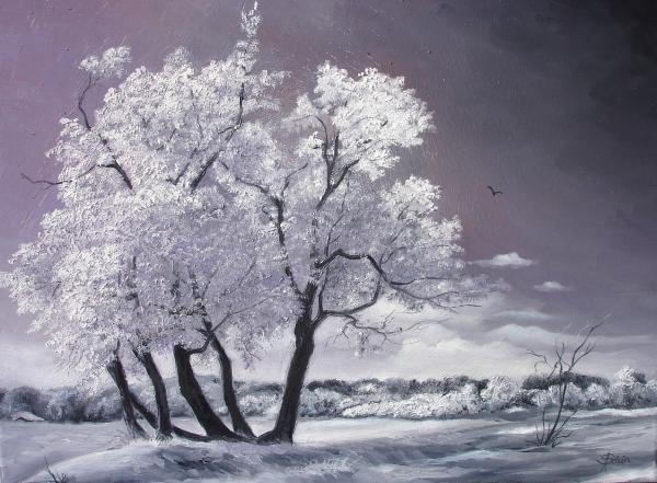 Freeze Print by Sorin Apostolescu