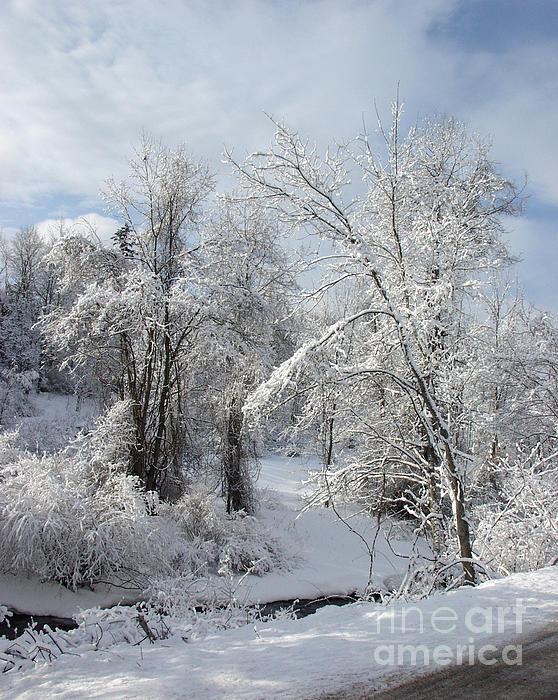Andrew Govan Dantzler - Fremont Snowfall 1
