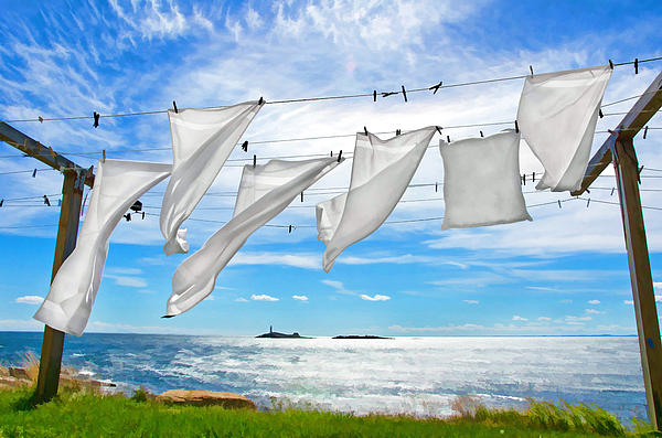 Fresh Laundry Print by Donna Doherty