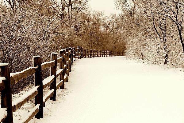 Fresh Snow Print by Rosanne Jordan