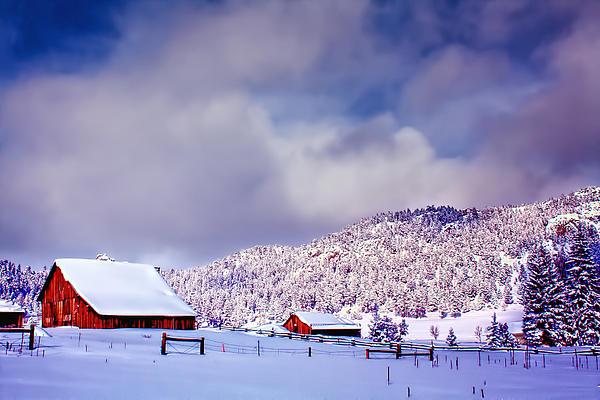 Freshly Fallen Snow On The Ranch Print by Teri Virbickis