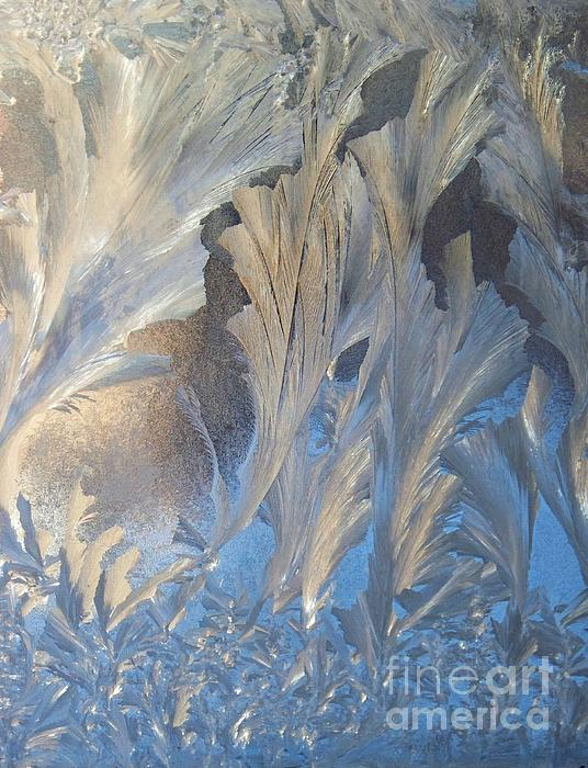 Frost On The Window Pane Print by Joy Nichols